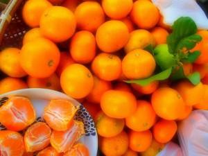 生柑橘のご注文について