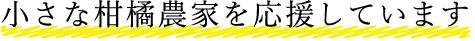 スタッフ紹介_15